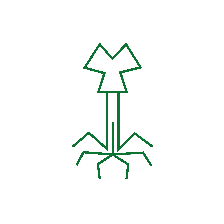 icons.ecobacterias (1)-02